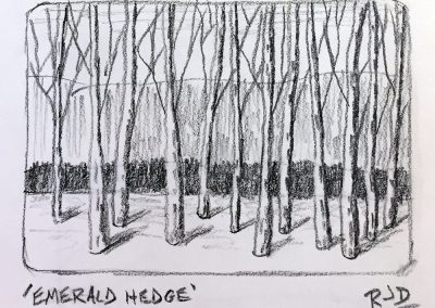Emerald Hedge | Pencil Sketch