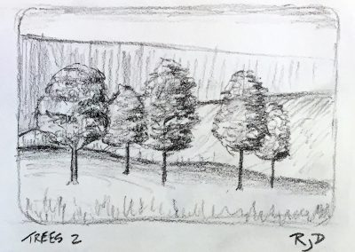 Trees 2 | Pencil Sketch