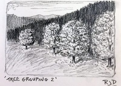 Tree Grouping 2 | Pencil Sketch