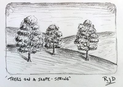 Trees on a Slope – Spring | Pencil Sketch