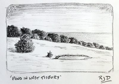 Pond in West Tisbury | Pencil Sketch