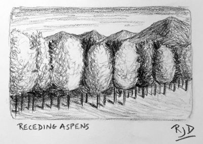 Receding Aspens | Pencil Sketch