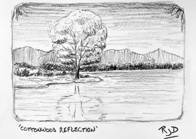 Cottonwood Reflection | Pencil Sketch