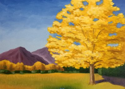 Lone Cottonwood | Oil on Canvas | 18x24
