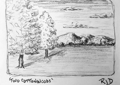 Two Cottonwoods | Pencil Sketch